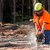 Short Award in Chainsaw Skills course thumbnail image