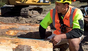 New Zealand Certificate in Forest Harvesting Operations Level 3 course thumbnail image