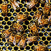 Apiculture beekeeping course