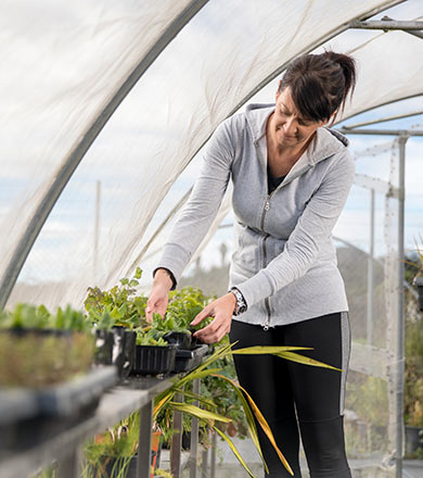 Horticulture student tending plant in greenhouse