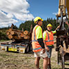 New Zealand Certificate in Forest Harvesting Operations (Level 3) - Woodsman Programme
