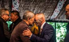An image of a traditional Maori hongi